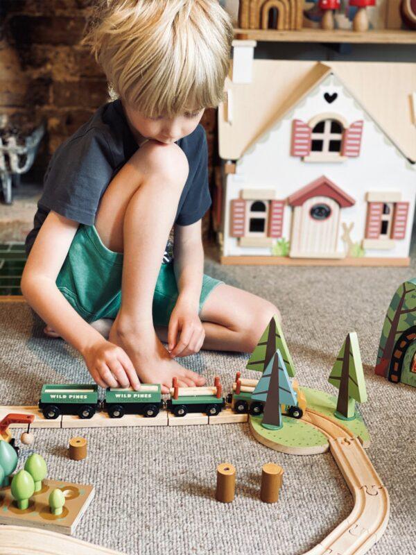 TL8702 wild pines train set 12
