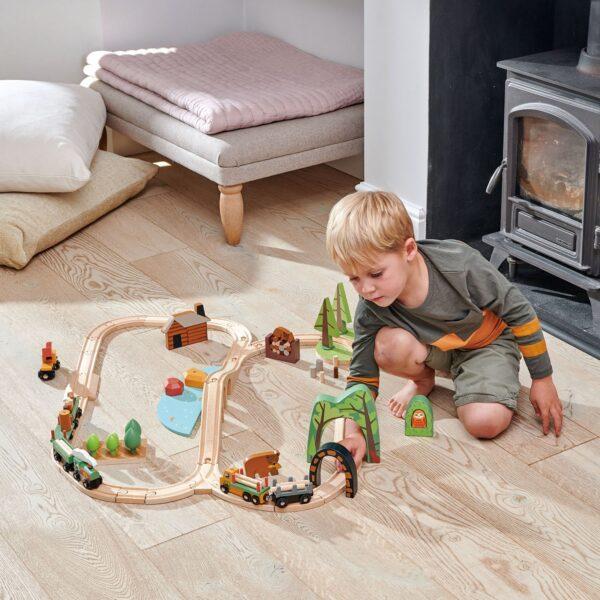 TL8702 wild pines train set 7