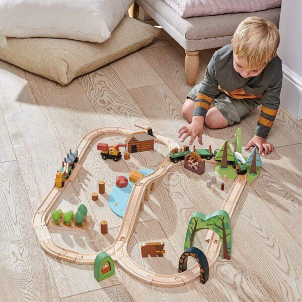 TL8702 wild pines train set 8